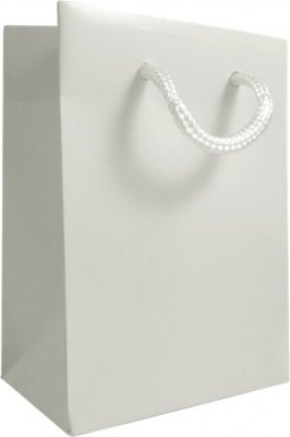 White Gloss Gift Bag